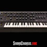 Moog Subsequent 37 Analog Synthesizer: Jalur Sinyal Analog yang Ditingkatkan untuk Keserbagunaan Sonik yang Lebih Baik
